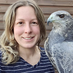 Falconry And Me