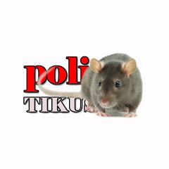 poliTIKUS TV