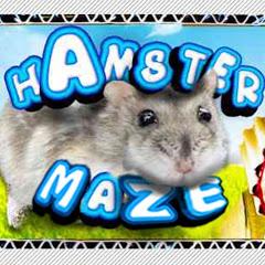 DIY Hamster Maze