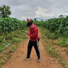 เกษตรหรรษา ไร่สีทอง