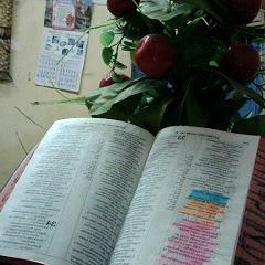 BIBLIA NURU YA DUNIA