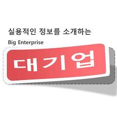 대기업 [Big Enterprise]