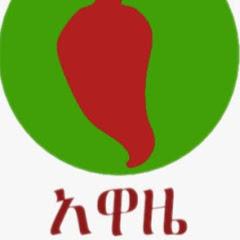 Alemneh Wasse