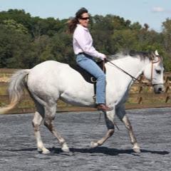 Tao of Horsemanship