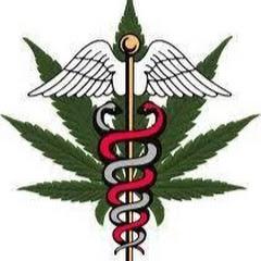 医療大麻ゼミナールTV
