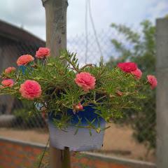 PaPa Garden