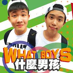 什麼男孩What Boys