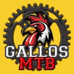 Gallos MTB