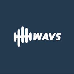 WAVS Custom Earbuds