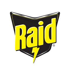 Raid Latinoamérica