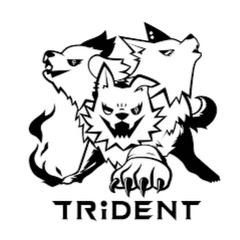 TRiDENT exガールズロックバンド革命