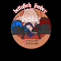 Bettafish_ jimbey