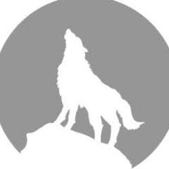539灰太狼