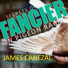 Secrets of Pigeon Racing