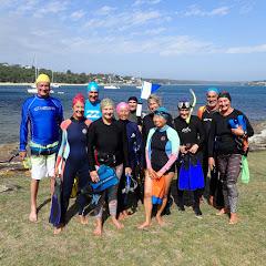 Shelly Ocean Swimmers