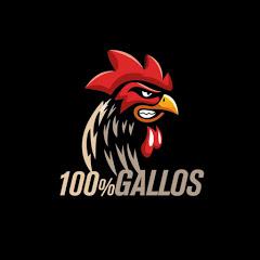 100% Gallos