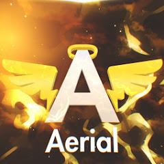 Aerial Asylum