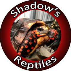 Shadow's Reptiles
