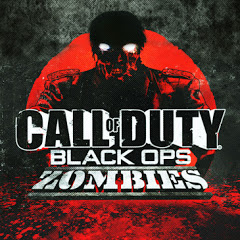 Call of Duty: Black Ops – Zombies - Topic
