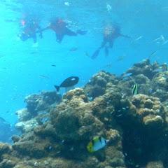maldives maldives