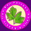 Baji Parveen Health & Beauty Tips