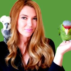 Parrot Playhouse