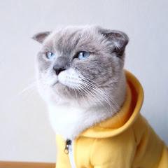 Ciel Meow Mun