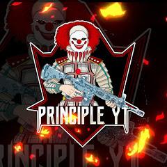 PRINCIPLE YT