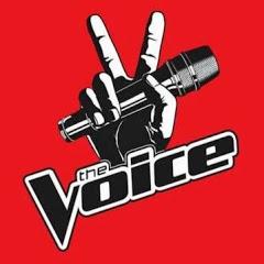 The Voice Best