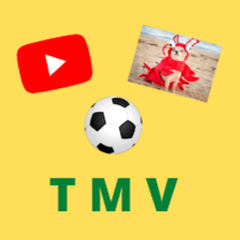 TMR - TikToks, Memes and Vids