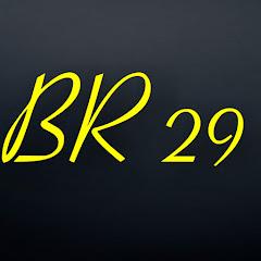 BR 29