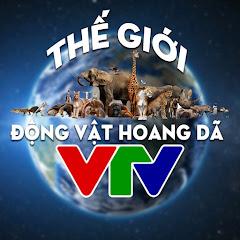 Thế Giới Động Vật Hoang Dã - VTV