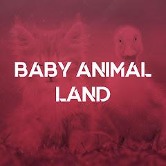Baby Animal Land