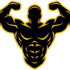 GYM Workout Videos