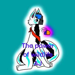 The power of Wildlife AJ