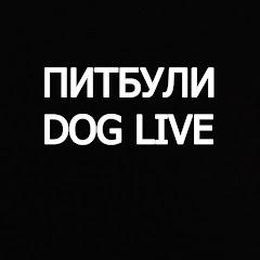 Питбули dog live
