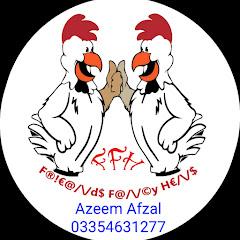 Friend Fancy hens