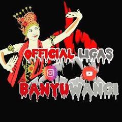 Official Ligas Banyuwangi