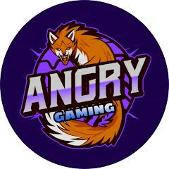 ANGRY GAMING