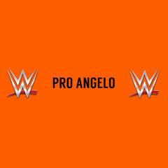 Pro Angelo