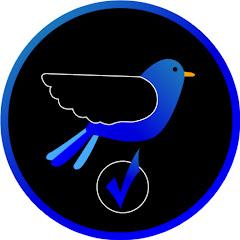 mavi 777
