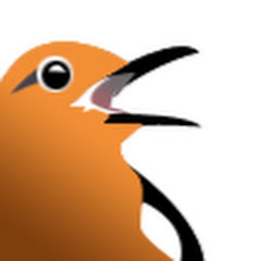 Seting Burung Kicauan