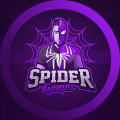 TOP 5 SPIDER