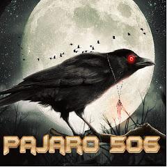 Pajaro 506