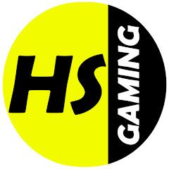 HS Gaming